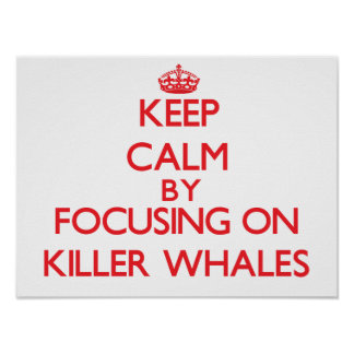 Keep calm by focusing on Killer Whales Posters