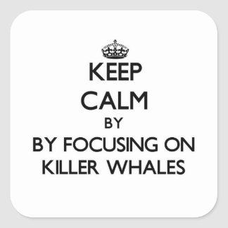 Keep calm by focusing on Killer Whales Square Sticker