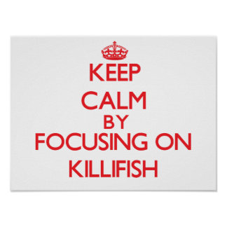 Keep calm by focusing on Killifish Poster