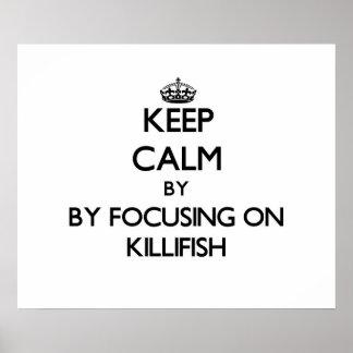 Keep calm by focusing on Killifish Print