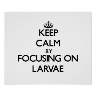 Keep Calm by focusing on Larvae Poster
