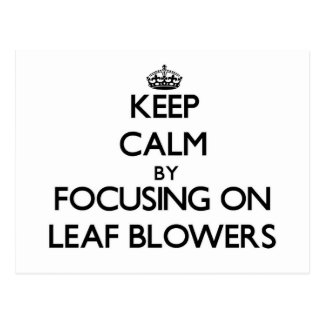 Keep Calm by focusing on Leaf Blowers Post Card