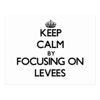 Keep Calm by focusing on Levees Postcard