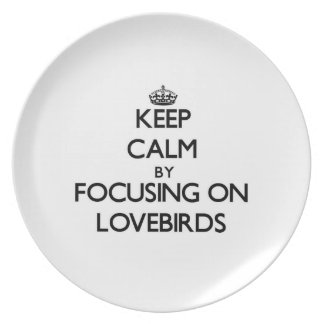 Keep Calm by focusing on Lovebirds Plate