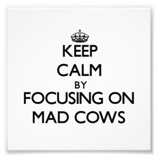 Keep Calm by focusing on Mad Cows Photographic Print