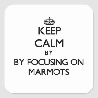 Keep calm by focusing on Marmots Sticker