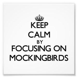 Keep Calm by focusing on Mockingbirds Photo Print