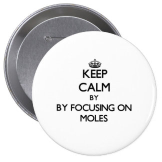 Keep calm by focusing on Moles Pinback Buttons