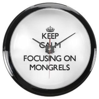 Keep Calm by focusing on Mongrels Aquarium Clock