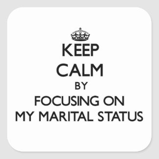 Keep Calm by focusing on My Marital Status Stickers