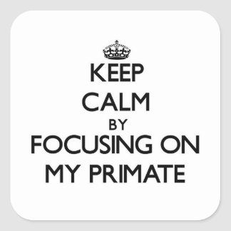 Keep Calm by focusing on My Primate Square Stickers