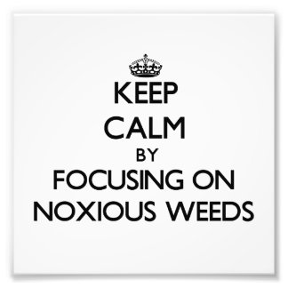 Keep Calm by focusing on Noxious Weeds Photographic Print