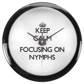 Keep Calm by focusing on Nymphs Fish Tank Clocks