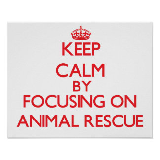 Keep calm by focusing on on Animal Rescue Poster