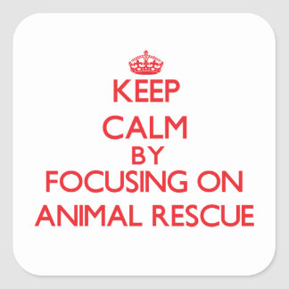 Keep calm by focusing on on Animal Rescue Stickers