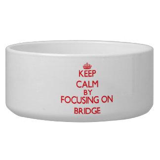 Keep calm by focusing on on Bridge Dog Food Bowls