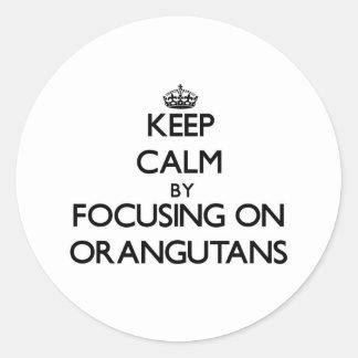 Keep Calm by focusing on Orangutans Round Stickers