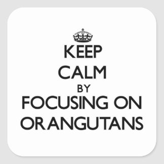 Keep Calm by focusing on Orangutans Square Stickers