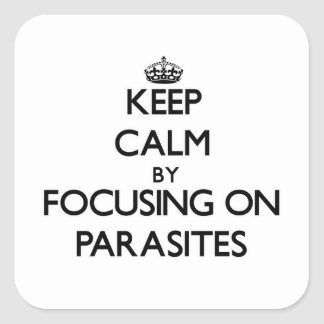Keep Calm by focusing on Parasites Square Stickers