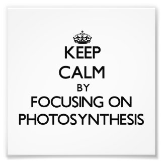 Keep Calm by focusing on Photosynthesis Photo Art