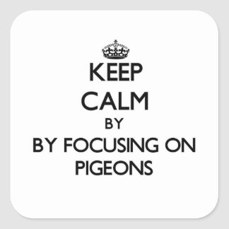 Keep calm by focusing on Pigeons Square Sticker