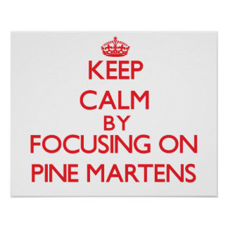 Keep calm by focusing on Pine Martens Poster