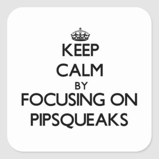Keep Calm by focusing on Pipsqueaks Square Sticker
