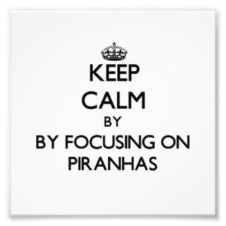 Keep calm by focusing on Piranhas Photographic Print