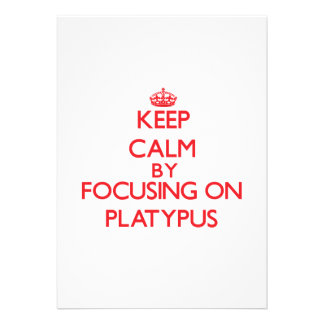 Keep calm by focusing on Platypus Cards