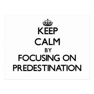 Keep Calm by focusing on Predestination Postcard
