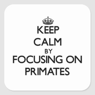 Keep Calm by focusing on Primates Square Stickers