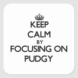 Keep Calm by focusing on Pudgy Square Sticker