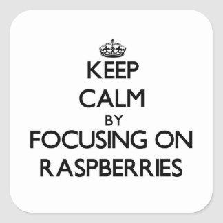 Keep Calm by focusing on Raspberries Square Sticker