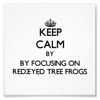 Keep calm by focusing on Red-Eyed Tree Frogs Photographic Print