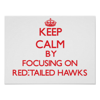 Keep calm by focusing on Red-Tailed Hawks Posters