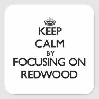 Keep Calm by focusing on Redwood Square Sticker