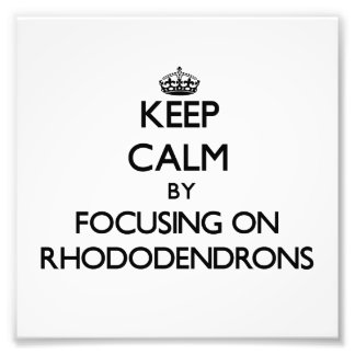 Keep Calm by focusing on Rhododendrons Photo Art