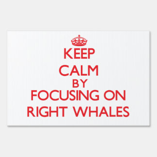 Keep calm by focusing on Right Whales Signs