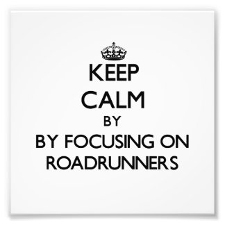 Keep calm by focusing on Roadrunners Photograph