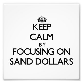 Keep Calm by focusing on Sand Dollars Photo Print