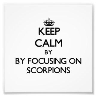 Keep calm by focusing on Scorpions Photo Art
