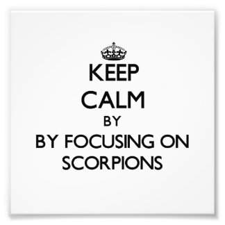 Keep calm by focusing on Scorpions Art Photo