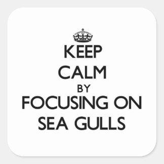 Keep Calm by focusing on Sea Gulls Square Sticker