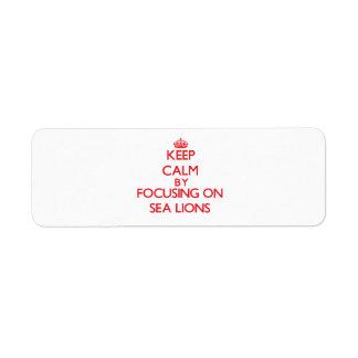 Keep calm by focusing on Sea Lions Custom Return Address Labels