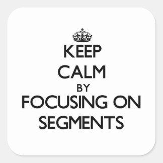 Keep Calm by focusing on Segments Sticker