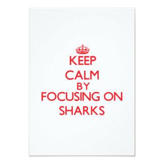 Keep calm by focusing on Sharks Custom Announcement