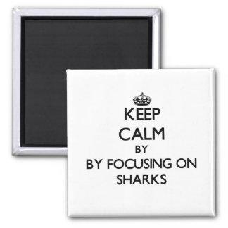 Keep calm by focusing on Sharks Fridge Magnets