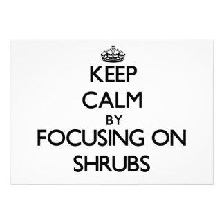 Keep Calm by focusing on Shrubs Announcement