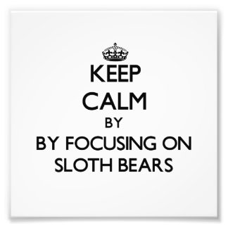 Keep calm by focusing on Sloth Bears Photographic Print