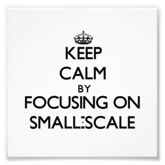 Keep Calm by focusing on Small-Scale Art Photo
